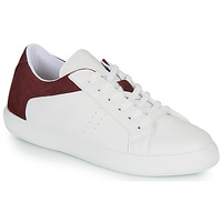 Schoenen Heren Lage sneakers André BIOTONIC Wit / Bordeaux