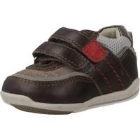 Schoenen Jongens Lage sneakers Chicco G12.0 Bruin