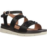 Schoenen Dames Sandalen / Open schoenen Stonefly ELODY 1 Zwart