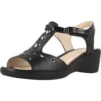 Schoenen Dames Sandalen / Open schoenen Stonefly VANITY III 9 Zwart