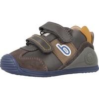 Schoenen Jongens Lage sneakers Biomecanics 181155 Grijs