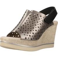 Schoenen Dames Sandalen / Open schoenen Carmela 66165C Grijs