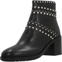 Schoenen Dames Laarzen Elvio Zanon I6301N Zwart
