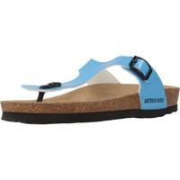 Schoenen Dames Slippers Antonio Miro 316602 Blauw