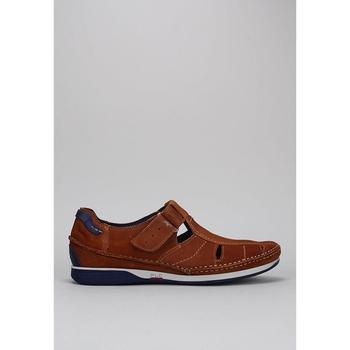 Schoenen Heren Sandalen / Open schoenen Fluchos  Brown