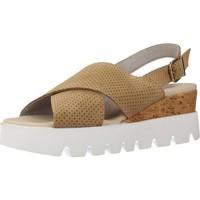 Schoenen Dames Sandalen / Open schoenen Clover 7719C Bruin