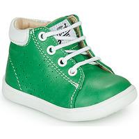 Schoenen Jongens Hoge sneakers GBB FOLLIO Groen