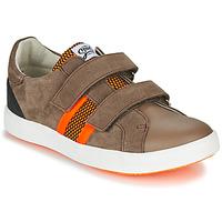 Schoenen Jongens Lage sneakers GBB AVEDON Brown