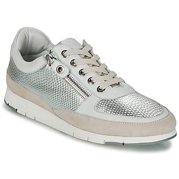 Schoenen Dames Lage sneakers TBS CAVANNA Zilver / Beige