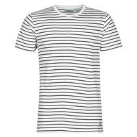 Textiel Heren T-shirts korte mouwen Yurban KINO Marine / Wit