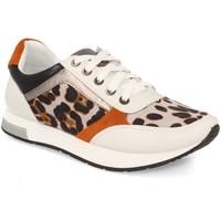 Schoenen Dames Lage sneakers Kylie K1940004 Leopardo