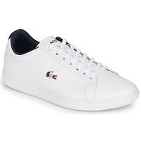 Schoenen Heren Lage sneakers Lacoste CARNABY EVO TRI1 SMA Wit