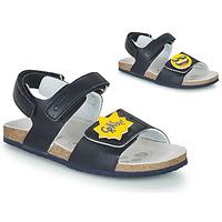 Schoenen Jongens Sandalen / Open schoenen Chicco HAZEL Blauw / Geel