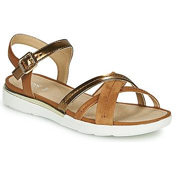 Schoenen Dames Sandalen / Open schoenen Geox D SANDAL HIVER Goud / Brown