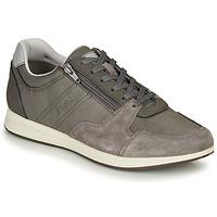 Schoenen Heren Lage sneakers Geox U AVERY Grijs