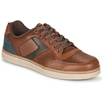 Schoenen Heren Lage sneakers Skechers HESTON PELANO Brown / Blauw