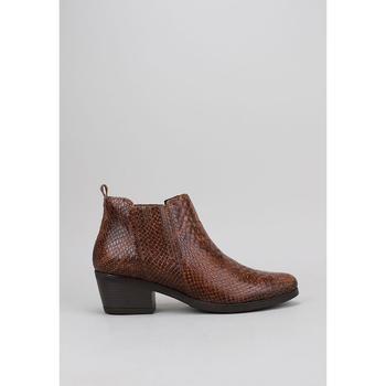 Schoenen Dames Low boots Sandra Fontan BELEY Brown