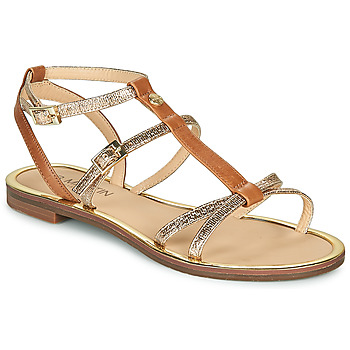 Schoenen Dames Sandalen / Open schoenen JB Martin 1GRIOTTES Brown / Goud
