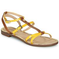 Schoenen Dames Sandalen / Open schoenen JB Martin 1GRIOTTES Geel / Brown