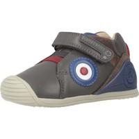 Schoenen Jongens Lage sneakers Biomecanics 191157 Grijs