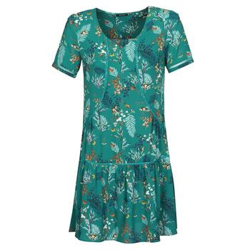 Textiel Dames Korte jurken One Step RENATO Groen
