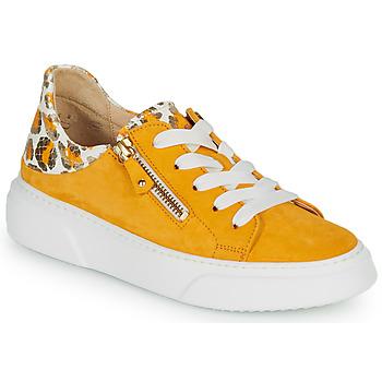 Schoenen Dames Lage sneakers Gabor  Geel