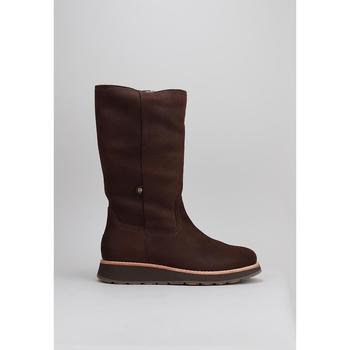 Schoenen Heren Laarzen Panama Jack Columbia Brown