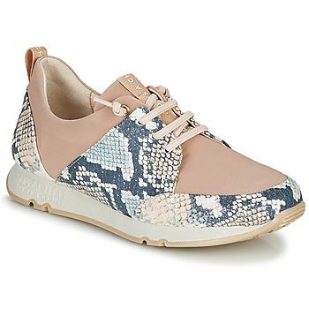 Schoenen Dames Lage sneakers Hispanitas KIOTO Beige / Blauw