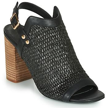 Schoenen Dames Sandalen / Open schoenen Ravel CLIFTON Zwart