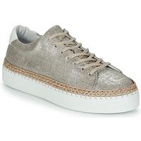 Schoenen Dames Lage sneakers Pataugas SELLA/T Zilver