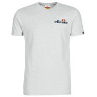 Textiel Heren T-shirts korte mouwen Ellesse VOODOO Grijs