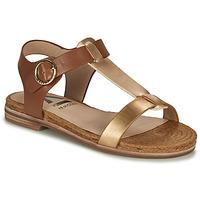 Schoenen Dames Sandalen / Open schoenen Armistice RIO SUNSET Brown / Goud