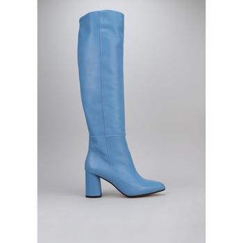 Schoenen Dames Hoge laarzen Roberto Torretta  Blauw