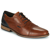 Schoenen Heren Derby Bullboxer TOM Brown