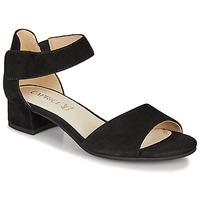 Schoenen Dames Sandalen / Open schoenen Caprice  Zwart