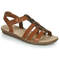 Schoenen Dames Sandalen / Open schoenen Clarks BLAKE JEWEL  camel