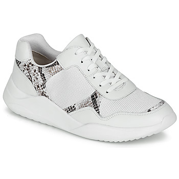 Schoenen Dames Lage sneakers Clarks SIFT LACE Wit / Phyton