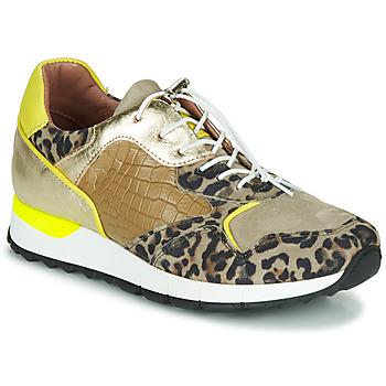 Schoenen Dames Lage sneakers Mjus CAST Kaki / Leopard