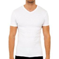 Ondergoed Heren Hemden Abanderado Pack-3 t-shirts m / short thermique Wit