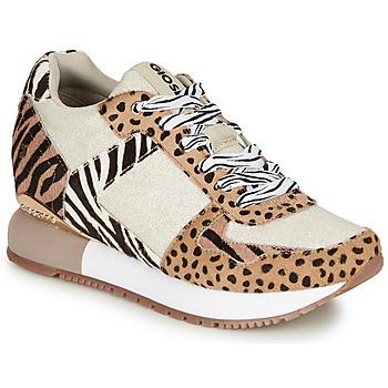 Schoenen Dames Lage sneakers Gioseppo BIKANER Beige / Brown