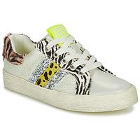 Schoenen Meisjes Lage sneakers Gioseppo TIRRENIA Wit / Geel / Zilver