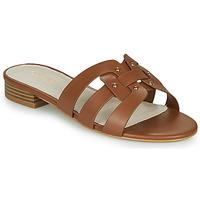 Schoenen Dames Sandalen / Open schoenen André PERPETUA Brown