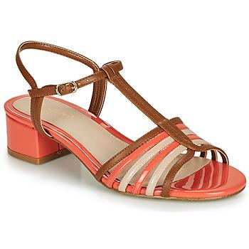 Schoenen Dames Sandalen / Open schoenen André PARISETTE Multi-couleurs