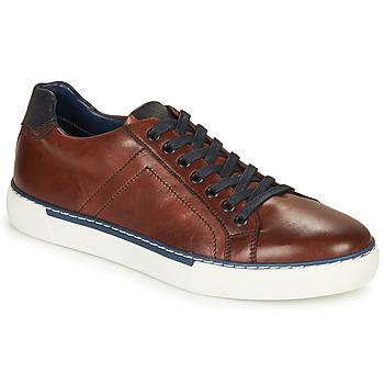 Schoenen Heren Lage sneakers André SHANN Brown