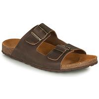 Schoenen Heren Sandalen / Open schoenen André VISON Brown