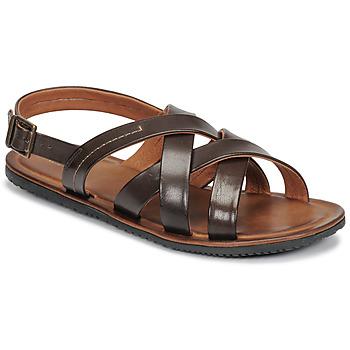 Schoenen Heren Sandalen / Open schoenen André SOLEIL Brown