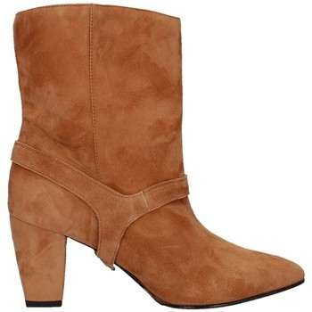 Schoenen Dames Low boots Andrea Pinto 835 Leather