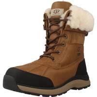 Schoenen Dames Snowboots UGG ADIRONDACK BOOT III Bruin