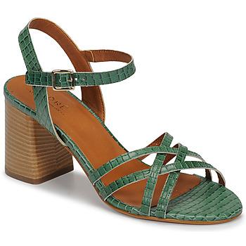 Schoenen Dames Sandalen / Open schoenen André BRYNN Groen