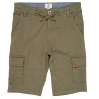 Textiel Jongens Korte broeken / Bermuda's Timberland TAO Groen